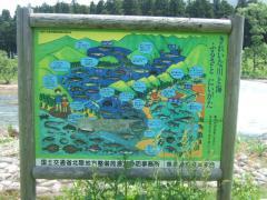 2011_0603登川河川公園0004