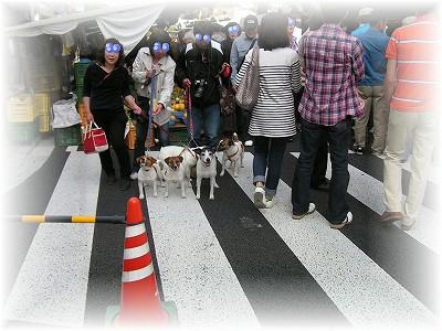 PICT0135縮小_(10・05・03)