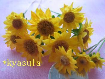 IMG_5215_convert_20110617152612.jpg