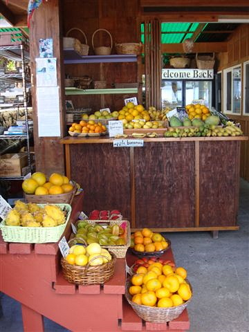 South Kona Fruit Stand