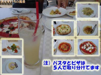 OW ペット&グリーン本山店