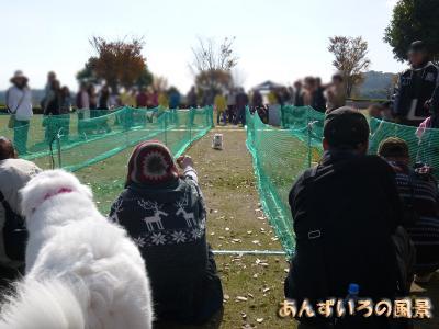 フードパル熊本