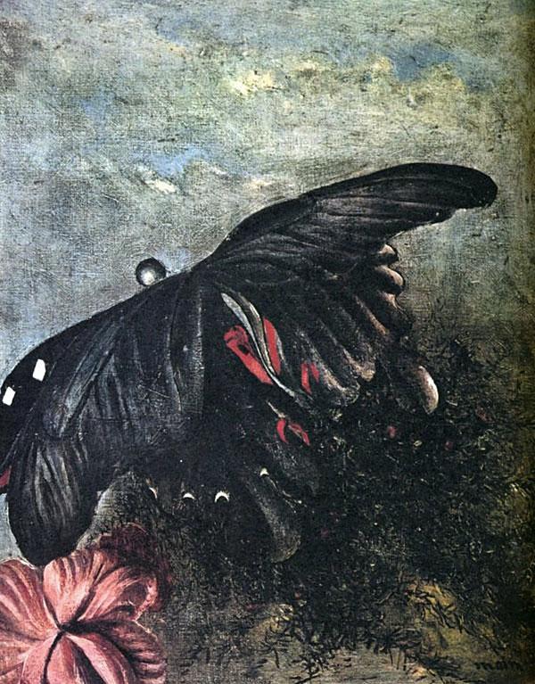 靉光『蝶』