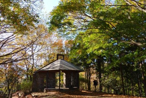 七沢森林公園 紅葉