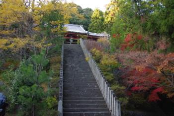 本堂前の階段