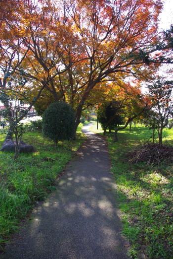 竜田公園3