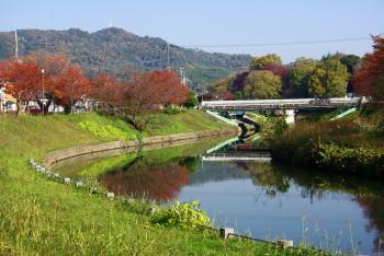 竜田公園4