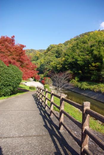 竜田公園1