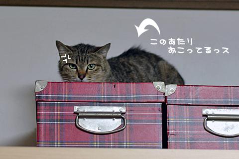 2010-04-01-4.jpg