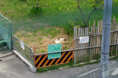 2010-05-23-1.jpg