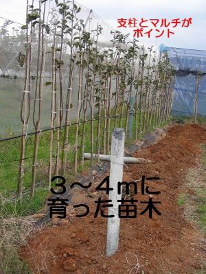 DSCN3162edit.jpg