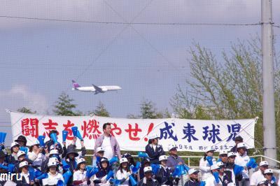 成東応援団