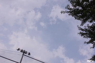 7月24日昭和学院5