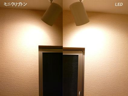 20100505_02.jpg