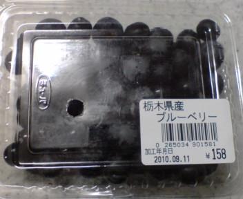 DSC00263.jpg