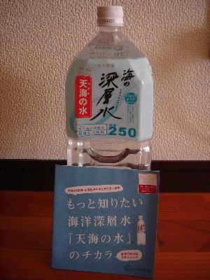 2010_2_21c.jpg