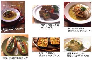 2010_2_23.jpg