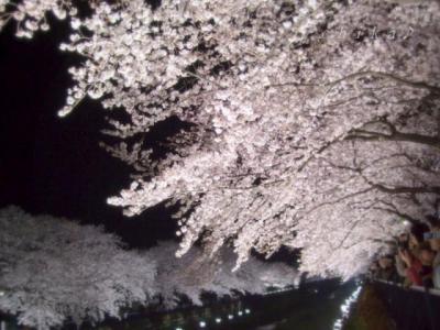 枝垂桜幻想 2 ロゴ640