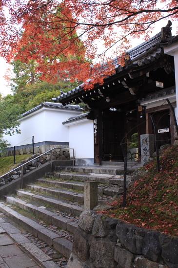 京都 09.11.270009
