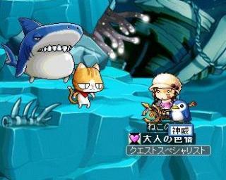 深海にネコ?