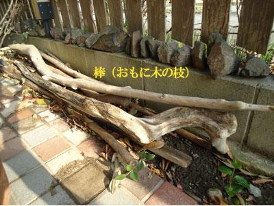 musuko2.jpg