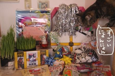 プレゼント20100620