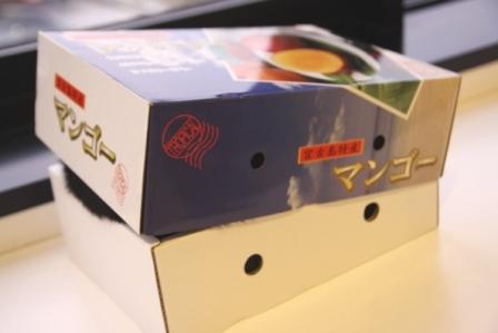 マンゴー箱20100703-2