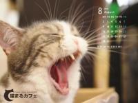 あくびマール201008-3