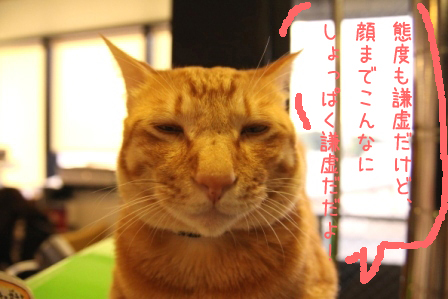 ちゃんぷ20100913-2
