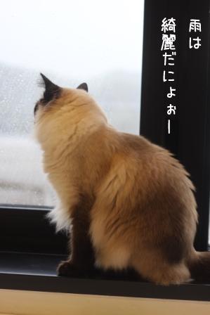あぽろ20100923-3
