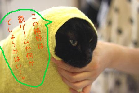 しろう店長20101004-2