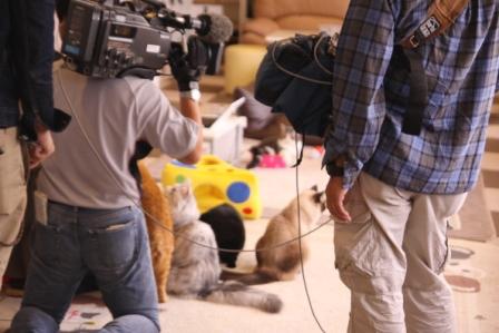 テレビ局20101019-2