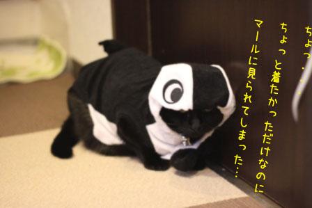 しろう店長20101028-3