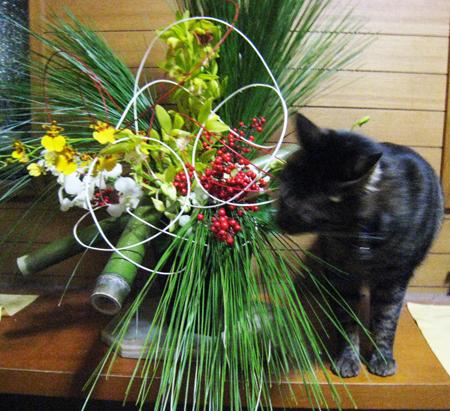 正月の花3