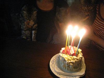 h22みゆき誕生日-3