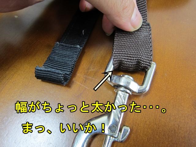 IMG_04171.jpg