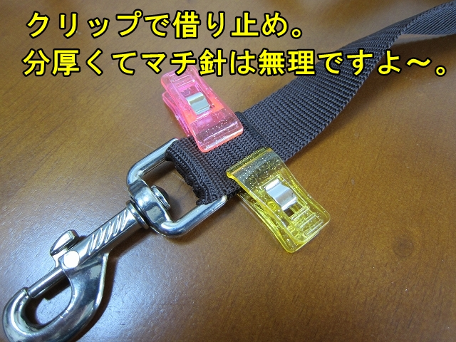 IMG_04181.jpg