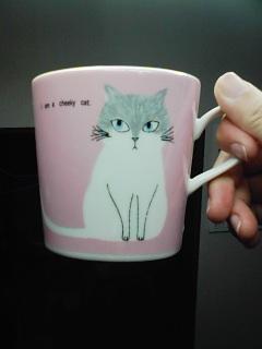猫カップ2