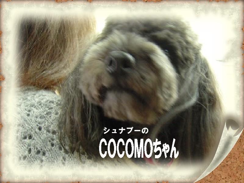 COCOMOちゃん