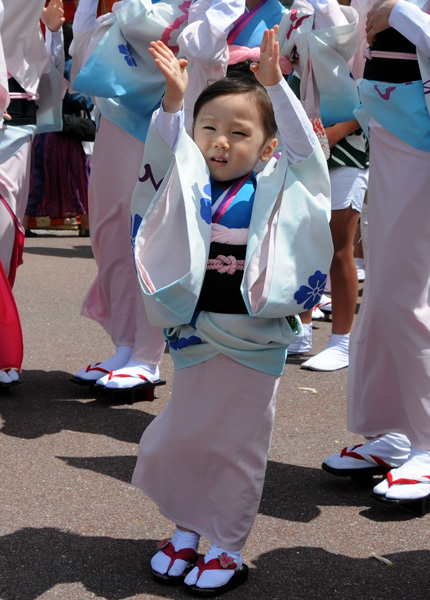 阿波踊り8