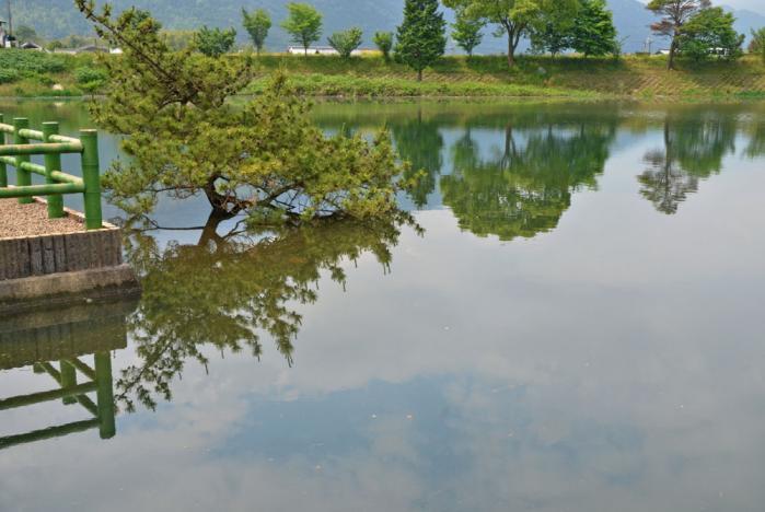 池田池公園6