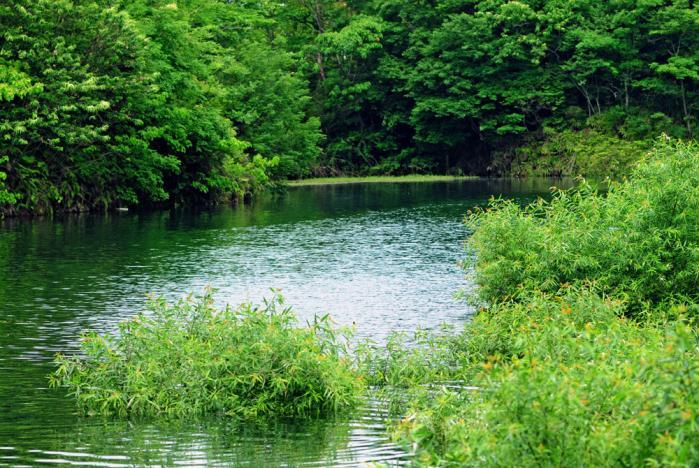 池田池公園8