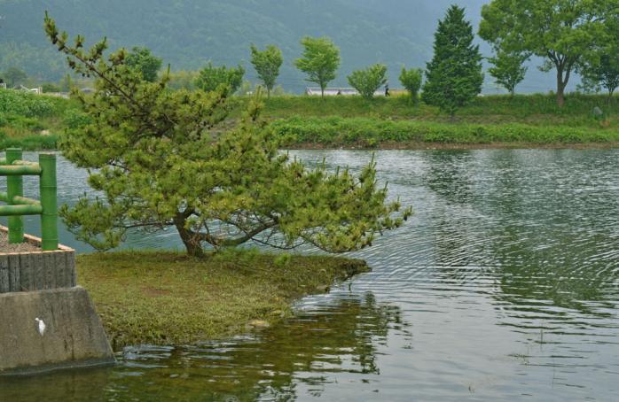 池田池公園7