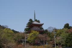 shinzenin2010_15.jpg