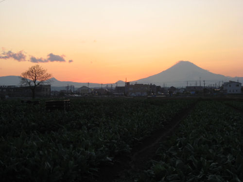 富士山 043