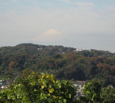 富士 036