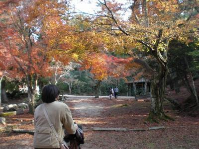 2009.11.28 宮島 036