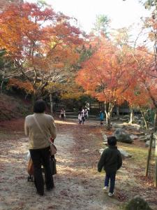 2009.11.28 宮島 109