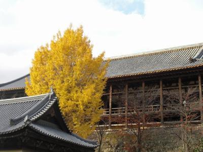 2009.11.28 宮島 127