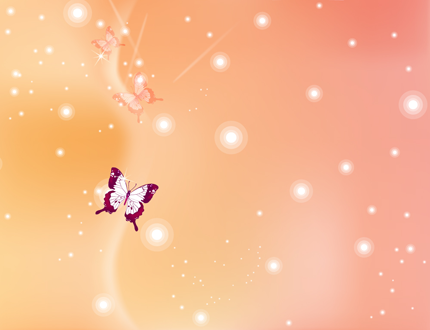 蝶々の壁紙